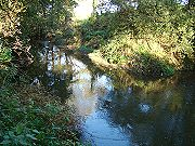 River Chew - Brookmead - click to enlarge